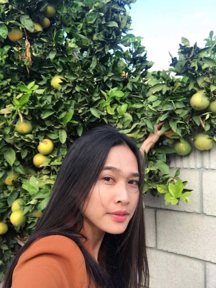 Vườn hoa cây trái ở Mỹ của người đẹp Việt khiến nhiều người thích thú