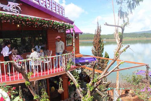 Pini Coffee 'hồi sinh' ở xứ sở ngàn hoa
