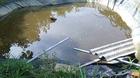 4 trẻ tử vong vì cái 'bẫy' chết người trong vườn nhà