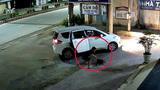 Cẩu tặc đi ô tô trộm chó nhanh như chớp