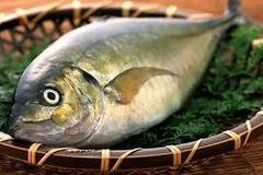 Bạn đã biết cách chọn cá biển tươi ngon