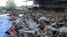 Điều đáng sợ trong nghĩa địa ô tô khổng lồ ở Bắc Giang