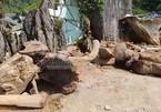 Điều khó hiểu trong nhà của trùm ma túy khét tiếng Nguyễn Thanh Tuân