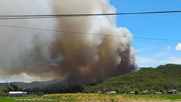 Nắng rát gió Lào, rừng thông ở Nghệ An cháy khắp nơi