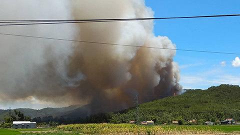 Cháy rừng thông