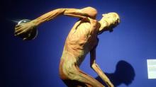 Bộ Văn hoá lên tiếng về triển lãm cơ thể người gây phản cảm