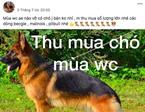 'Lão Hạc' mùa World Cup: Hết tiền đến chó cũng bán!