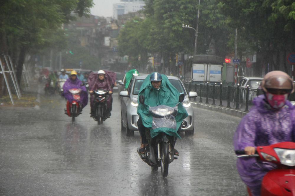 Hà Nội 'hả hê' đón mưa giải nhiệt sau đợt nóng nghẹt thở