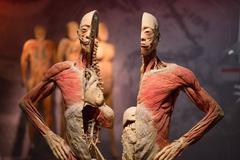 Triển lãm cơ thể người: Phạm luật, phi đạo đức hay sai thời điểm?