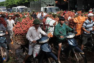 Trung Quốc thắng lớn, lo thế mạnh 6.000 tỷ của Việt Nam gặp khó