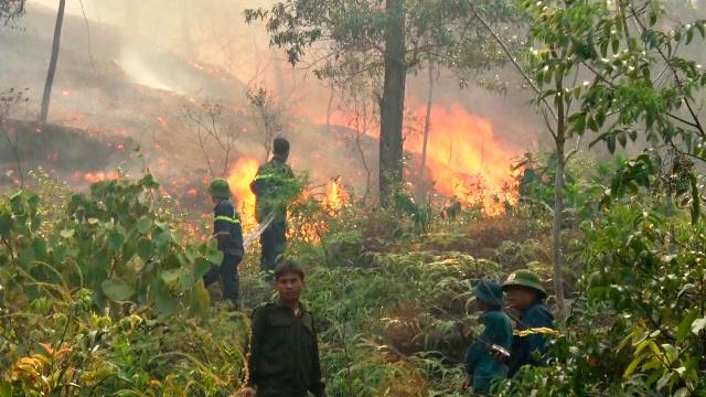 Rừng cháy rực, hơn 300 người thần tốc dập lửa chỉ 4 tiếng