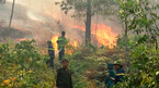 Thanh Hóa: Rừng cháy rực, hơn 300 người thần tốc dập lửa