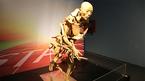 Tạm ngừng triển lãm cơ thể người đầu tiên ở Việt Nam vì sai phạm