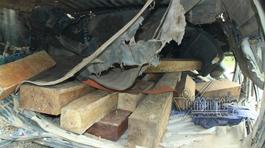 Lật xe gỗ lậu 2 người chết: Đình chỉ cả trạm quản lý bảo vệ rừng