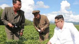 Vì sao Kim Jong Un không gặp Ngoại trưởng Mỹ ở Bình Nhưỡng?