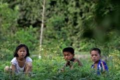 LHQ tiết lộ thực trạng thiếu thốn tại Triều Tiên
