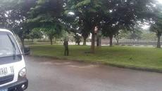 Đi tập thể dục, phát hiện thanh niên treo cổ trên cây