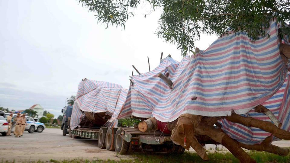 Cây 'quái thú' né CSGT ở Quảng Ngãi, tài xế 'chống cự' 6 tiếng