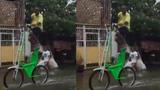 Chiếc xe đạp độc đáo phù hợp với những ngày mưa gió