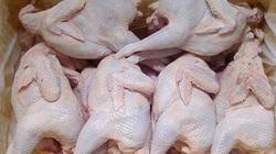 Nắm rõ dấu hiệu này, không lo mua nhầm gà thải loại độc hại