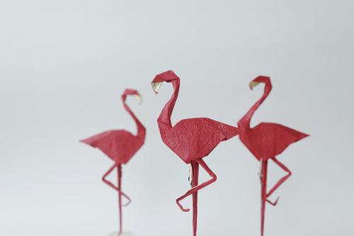 Triển lãm 'Những đôi cánh': Vẻ đẹp nghệ thuật gấp giấy Origami