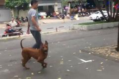Ông Đoàn Ngọc Hải xử 'mạnh tay' với chó thả rông ở trung tâm Sài Gòn