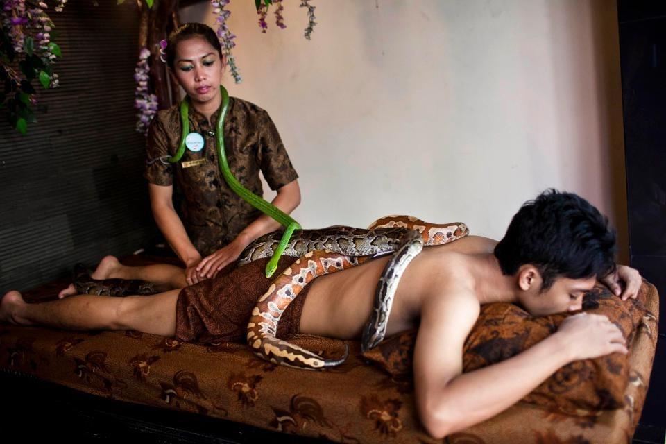 Bất ngờ với phương pháp cho trăn rắn trườn lên người để chữa bệnh