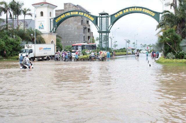 Dịch vụ mò biển số, chở người bằng xe bò 'hốt' bạc triệu ngày mưa lũ