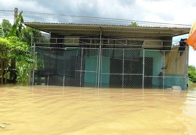 Lũ lụt ở miền trung,lũ lụt,lũ lụt ở Thanh Hoá