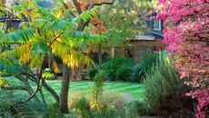 Căn phòng sau vườn và bí mật của bố mẹ chồng