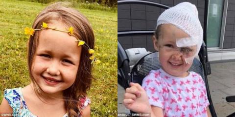 Bé gái suýt mất mạng vì chó căn và hành động bất ngờ của bạn thân