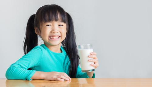 Chọn sữa tươi theo tiêu chuẩn Hà Lan