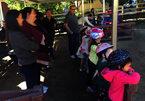 Mẹ Việt ở Úc tổ chức sinh nhật cho con theo cách đặc biệt