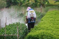 Giật mình, gần 1/2 người xét nghiệm tại Hà Nội nhiễm thuốc trừ sâu trong máu