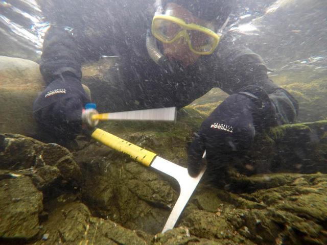 Bơi lặn dọc sông mò được cục vàng trị giá 1,5 tỷ đồng