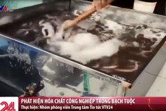 Bạch tuộc bẩn tuồn vào loạt nhà hàng nổi tiếng ở Hà Nội