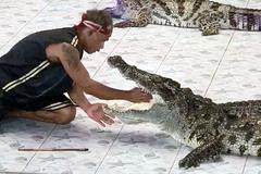 Tai nạn kinh hoàng của người huấn luyện cá sấu