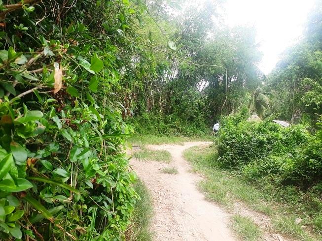 Tai nạn ở Quảng Nam: Nhói lòng bên mâm cỗ dang dở nhà cô dâu