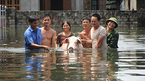Dự báo thời tiết 31/7: Hà Nội tiếp tục mưa, ngoại thành ngập lụt kéo dài