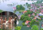 Lụt lịch sử ở Chương Mỹ: 'Hộ tống' lợn chạy khỏi biển nước