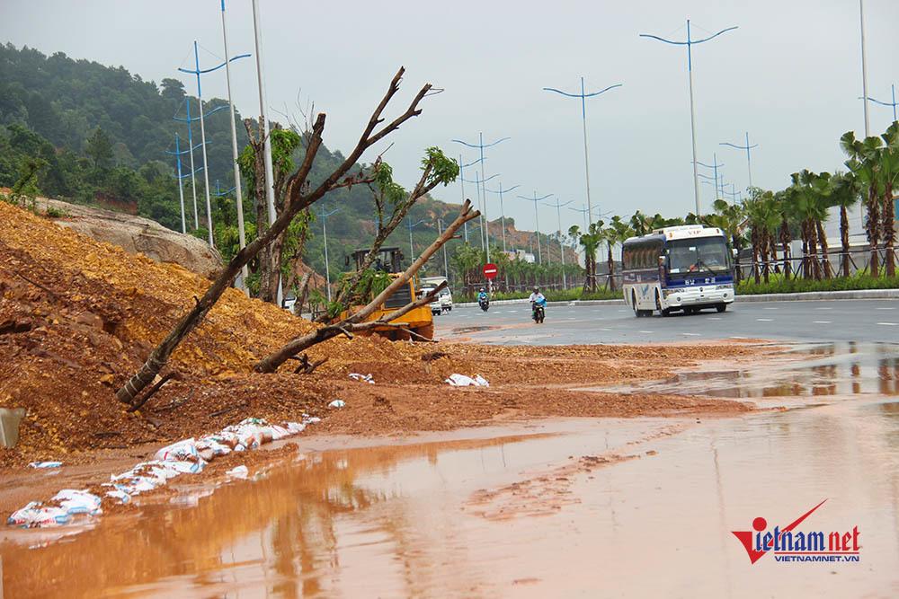 sạt lở,lở đất,mưa lũ,Quảng Ninh