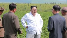Hình ảnh một mùa hè tất bật của Kim Jong Un