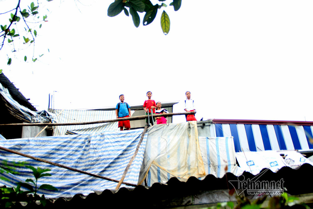 Học sinh Hà Nội leo cây, trèo nóc nhà đi học ngày lũ