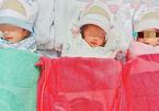 Ly kỳ cứu sống 3 bé sinh non thụ tinh trong ống nghiệm