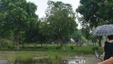 Hà Nội: Người đàn ông tử vong trong tư thế treo cổ ở hồ Đền Lừ
