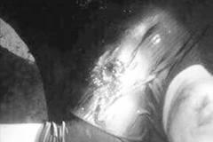 Chủ xe tải nổ súng đạn hoa cải bắn chết lái xe ở đất Cảng