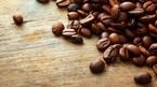 Giá cà phê hôm nay 6/8: Tăng do lo ngại hạn hán và biến động
