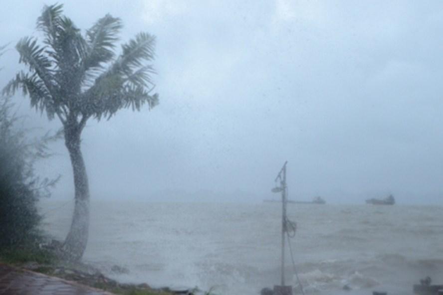 Dự báo thời tiết 6/8: Áp thấp xuất hiện trên Biển Đông