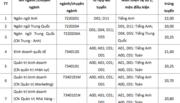 Điểm chuẩn Trường ĐH Tôn Đức Thắng từ 17 đến 22