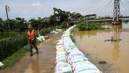 Lụt ở Chương Mỹ: Xin thí điểm kè bê tông 1,5km đê tả Bùi